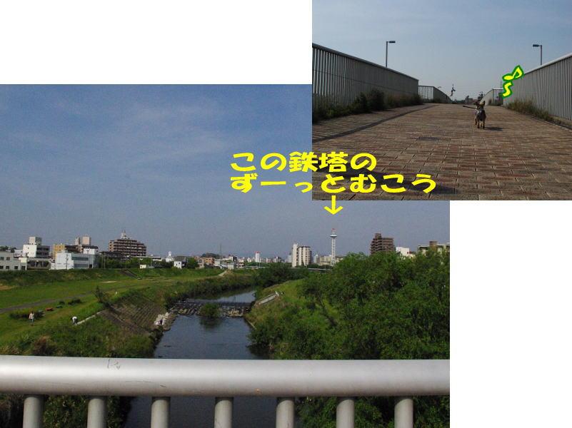 20100503di42